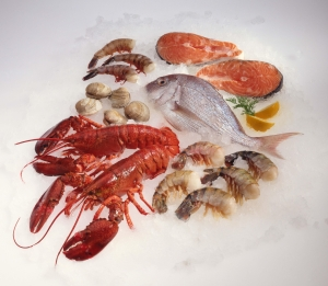 Variety of raw seafood